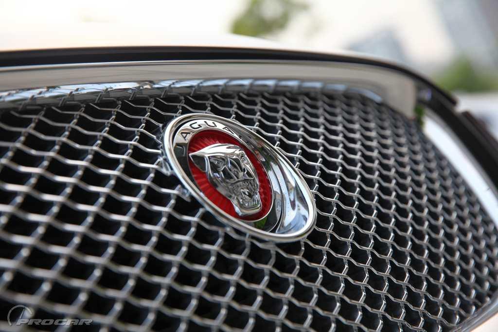 红底的捷豹车标,闪闪发光的镀铬装饰,这是一台2014款全新捷豹XF高清图片